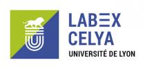 里昂声学中心 (CELYA)