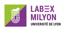 Communauté de mathématiques et d'informatique fondamentale à Lyon (MILYON)