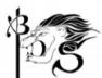 Bureau des sports BDS